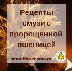 Как приготовить смузи с ростками пшеницы: пошаговая инструкция и простой рецепт от сайта Смузи Мама #smoothies #smoothiebowls #smoothiesaturday #recip #recipes #vegan #snacks #смузимама